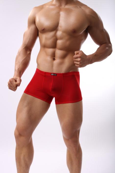 ropa interior roja chico