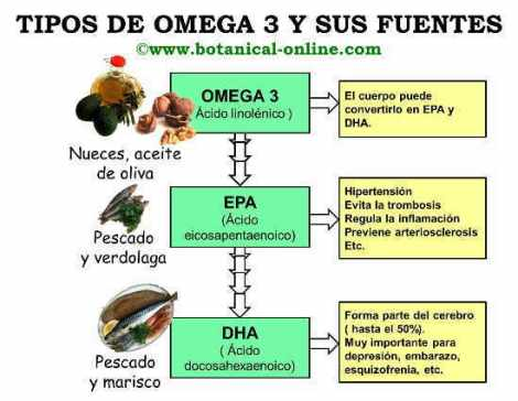 omega3-tipos-fuentes
