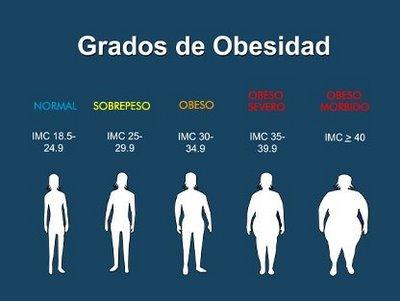 gordos grados