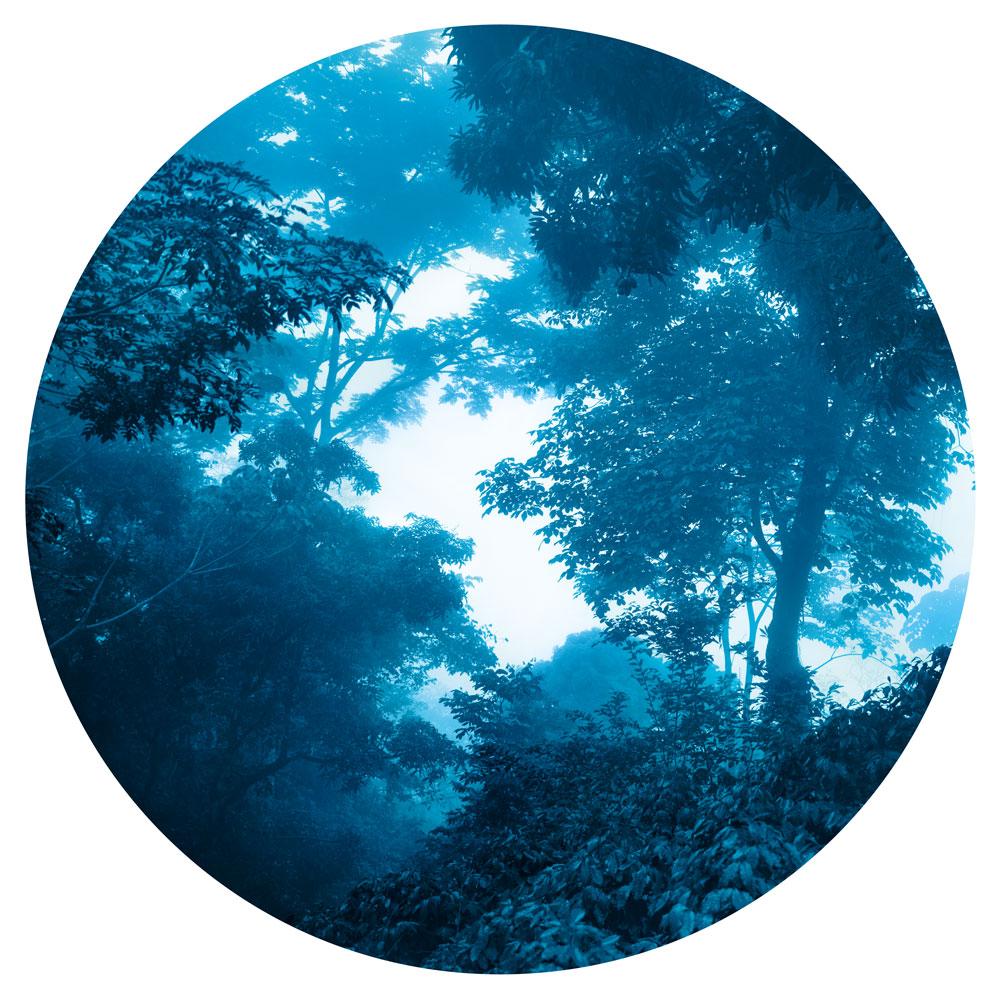 blue serum 1.jpg