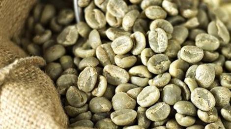 cafe-verde-costa-rica