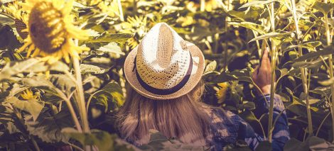 go_organic-fridda_dorsch-portada-1168x530